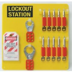 10-Lock Board with Padlocks